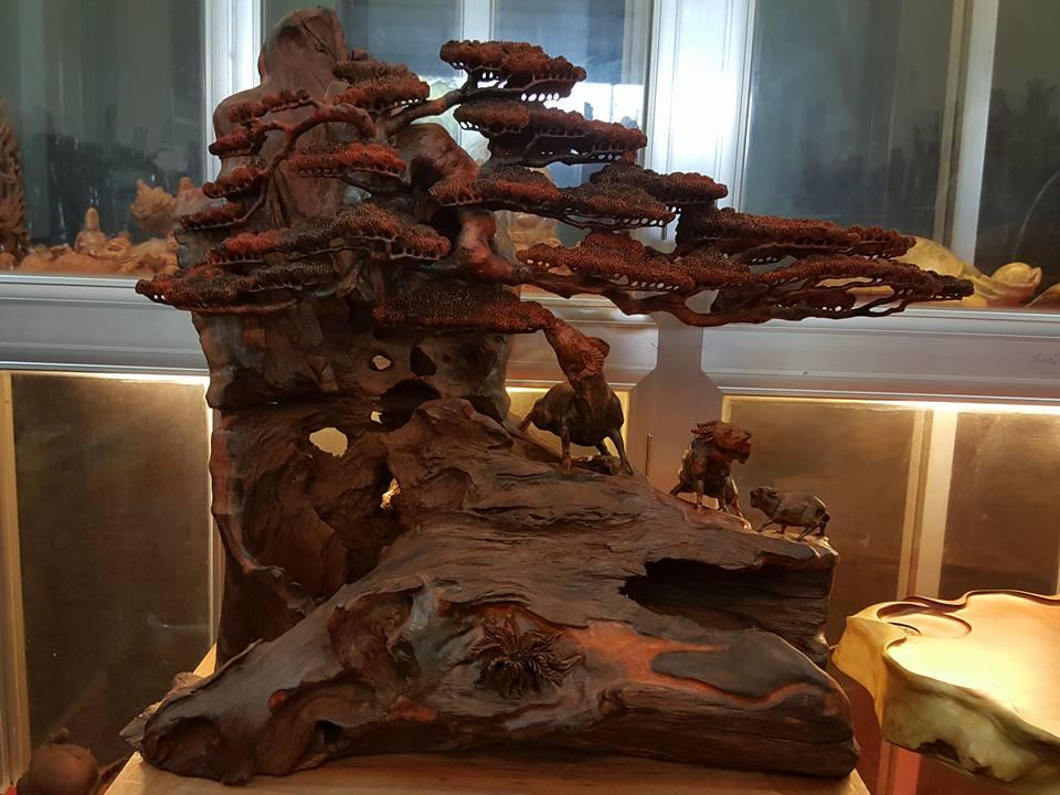 Bon sai gỗ trắc liền khối đục tinh xảo để mộc 64x62x32cm