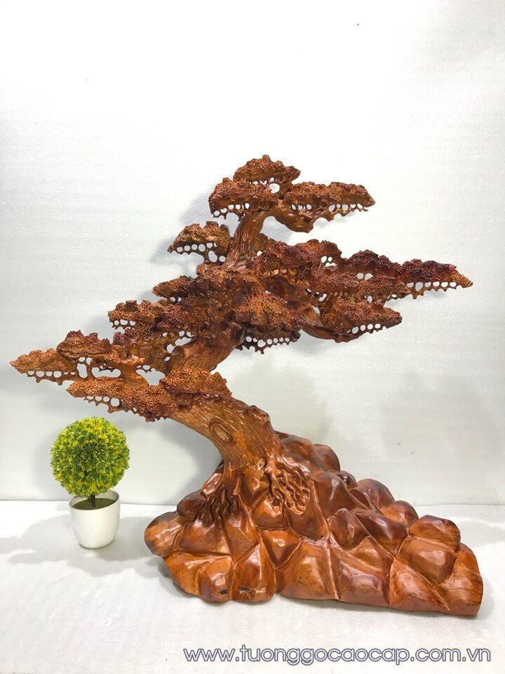 Bon sai dáng cây cổ thụ gỗ hương 75x80x32cm